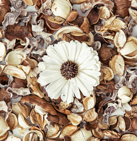 dried flowers: Decoration of dried flowers. Natural beauty. Spa theme. Stock Photo
