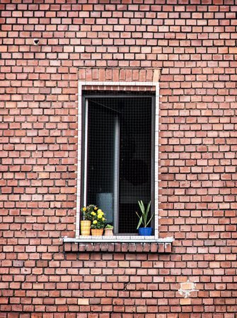 vertical composition: Window with potted flowers on the red brick wall. Architectural element. Vertical composition.