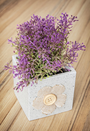 house plant: Small decorative potted plant on the wooden background. Home decoration. Beautiful house plant. Artificial flower.