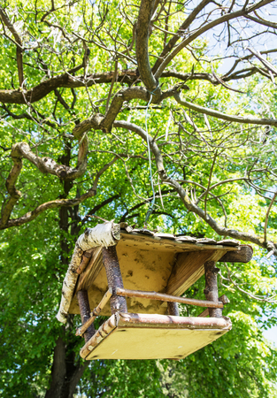 the ornithology: Wooden bird house hanging on the green tree. Beauty in nature. Ornithology theme. Vertical composition. Detailed natural scene.