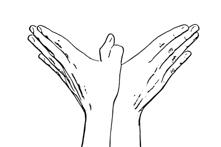body part: Womans hands makes bird shape. Black and white vector graphic. Body part. Female beauty. Illustration
