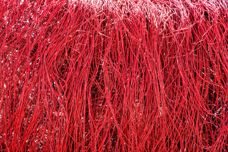 vibrant color: Background of artificial natural decoration. Thin red stripes. Vibrant color.