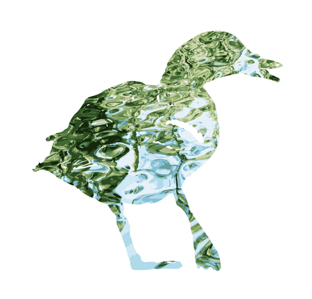 Silhouette of wild mallard duck filled with rippled water surface. Vector graphic. Natural theme. Duck stencil. Bird theme. Cutout stencil animal. Blue and green reflections.