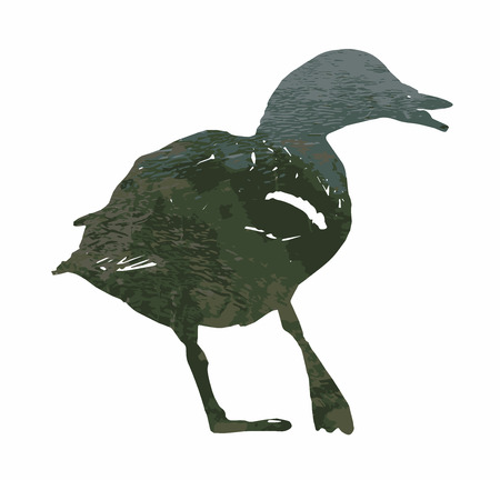 Silhouette of wild mallard duck filled with rippled water surface. Vector graphic. Natural theme. Duck stencil. Bird theme. Cutout stencil animal. Green reflections.