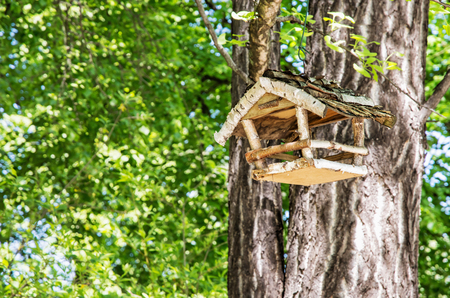 the ornithology: Wooden bird house hanging on the green tree. Seasonal natural scene. Beauty in nature. Ornithology theme. Tree branches. Nesting house.
