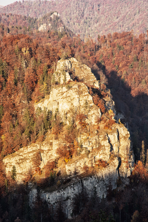 vertical composition: The rock in autumn forest by sunset in Harmanec, Slovak republic. Natural scene. Vertical composition. Deciduous trees. Beautiful place. Stock Photo