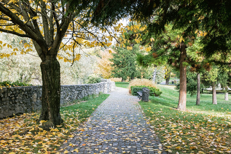trees seasonal: Footpath with benches, stone wall and colorful autumn trees. Seasonal park. Vibrant colors. Stock Photo