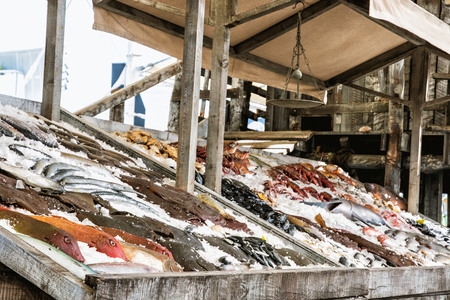 market place: Sale of various frozen fish on the ice. Market place. Marine products. Stock Photo