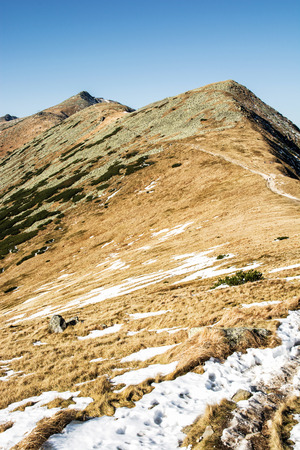 Footpath leading up the peak Chopok, Low Tatras, Slovak republic. Hiking theme. Beautiful place. Seasonal mountains scene. Vertical composition.