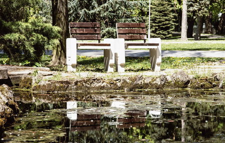 reflecting: Wooden benches reflecting in water in the city park. Seasonal natural scene. Place to relaxation. Stock Photo