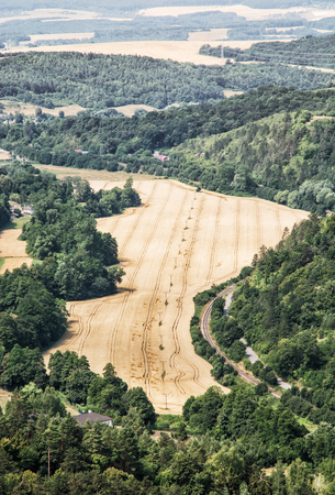 cultivated land: Fields and forests. Cultivated land. Agricultural landscape. Vertical composition.