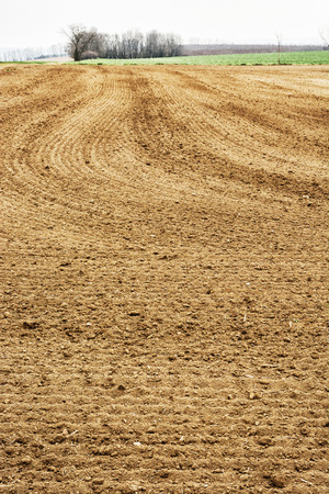 cultivated land: Seasonal fields scene. Agricultural landscape. Cultivated land. Stock Photo