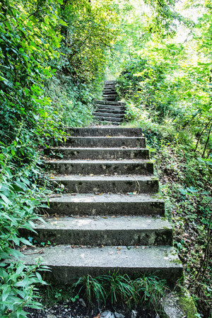Stoned stairs on the tourist trail in forest. Vertical composition. Seasonal outdoor scene. Stock Photo