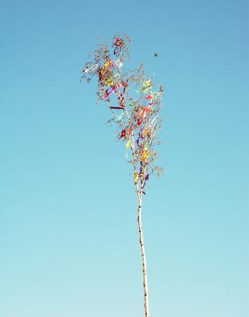 Looking up at may pole. Retro photo filter. Symbolic object. Stock Photo