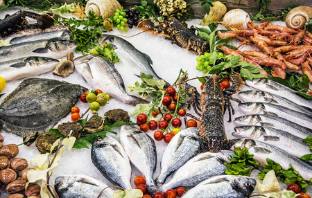 Fresh raw seafoods on counter in restaurant. Food theme. Mediterranean specialties.