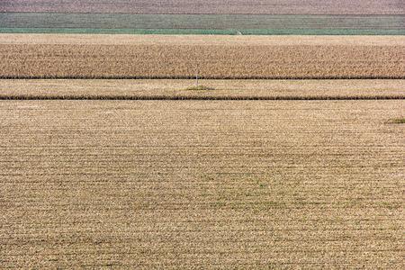 Scena di campi stagionali. Paesaggio agricolo Terra coltivata. Archivio Fotografico - 84870932