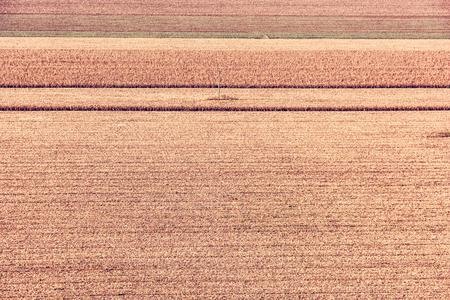 Scena stagionale dei campi. Paesaggio agricolo. Terra coltivata. Filtro foto rosso. Archivio Fotografico - 85583791