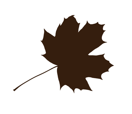 Brown shape of maple leaf isolated on the white background. Symbolic natural object. Stock Photo
