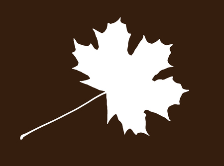 White shape of maple leaf on the brown background. Symbolic natural object.