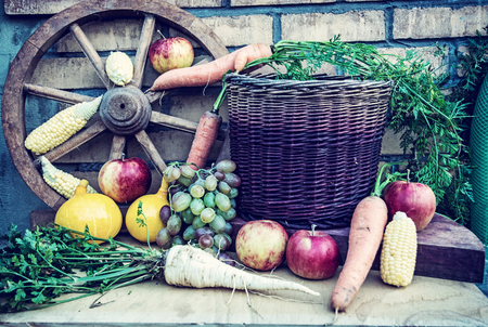Still life of fruits and vegetables in autumn. Rural food scene. Blue photo filter.