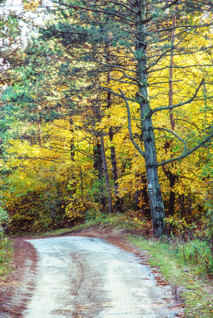 Rural tourist trail by autumn. Seasonal natural scene. Beauty in nature. Vibrant colors. Vivid photo filter. Stock Photo