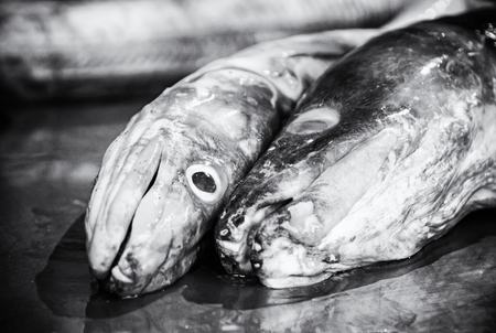Fish market in Trogir, Croatia. Detail photo. Food theme. Black and white photo.