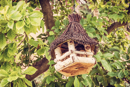 Wooden bird house hanging on the green tree. Ornithology theme. Seasonal natural scene. Beauty photo filter.
