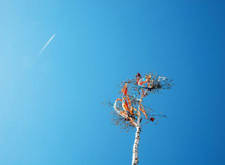 查寻在5月杆和飞机在蓝天。欧洲传统。Teal和橙色照片过滤器。