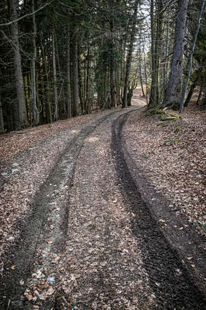 Tourist path in Big Fatra mountains, Slovak republic. Seasonal natural scene. Hiking theme. Standard-Bild