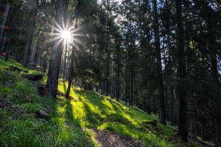Sunrays in Western Tatras mountains, Slovak republic. Hiking theme. Seasonal natural scene. Standard-Bild