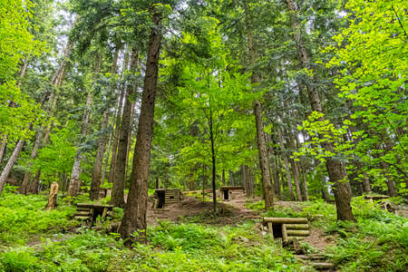Military bunkers in the forest, Dukla battlefield, Slovak republic. Travel destination. Standard-Bild
