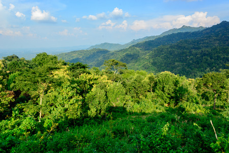 Hill of Gedangsari, Gunungkidul, Yogyakarta