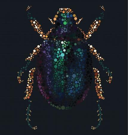 entomologist: Scarab Beetle Illustration