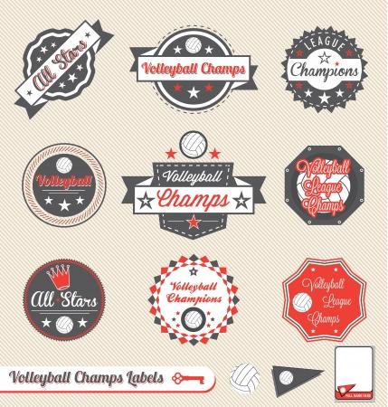 voleibol: Vector set: vintage Voleibol Liga de Campeones etiquetas y pegatinas