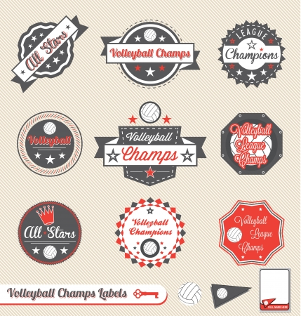 Vector Set: Vintage Volleyball League Champs Labels and Stickers Vector