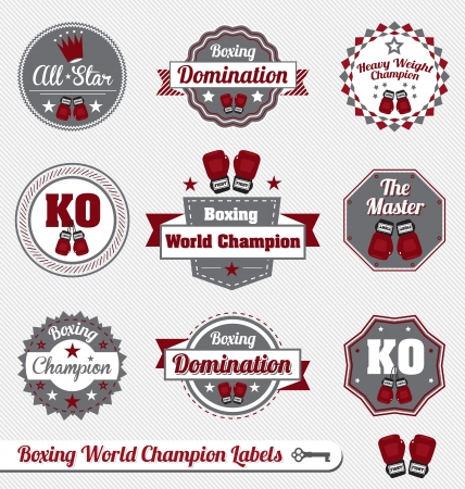 boxing sport: Vector Set: Vintage Boxing Champion Labels and Icons