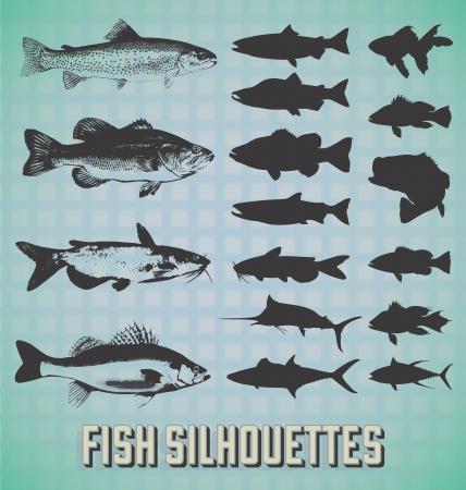 セット: 魚のシルエット  イラスト・ベクター素材
