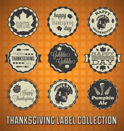 Set: Vintage Happy Thanksgiving Labels and Icons Vector
