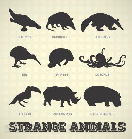 ベクトルを設定: 奇妙な奇妙な動物のシルエット  イラスト・ベクター素材