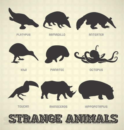 Vector Set: Strange and Odd Animal Silhouettes Vector