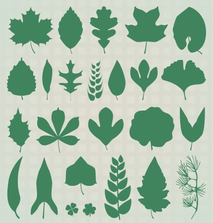 four objects: Leaf Silhouettes