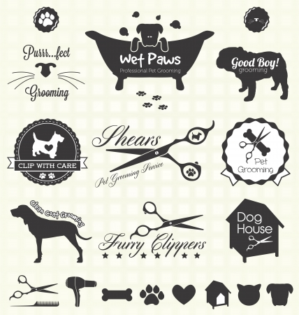 cat grooming:  Set  Pet Grooming Labels Illustration