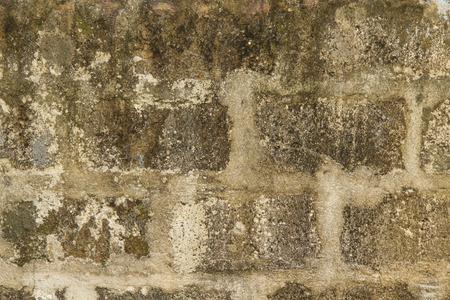 Cinder block wall Stock fotó