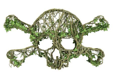 Ivy nature skull