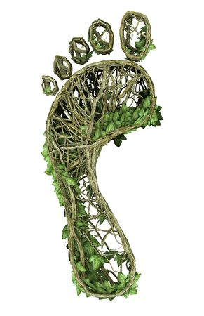 Ivy nature footprint Stock Photo