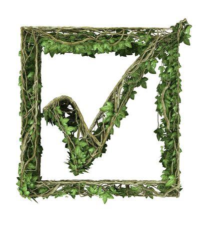 Ivy nature tick