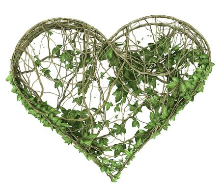 ivy nature heart