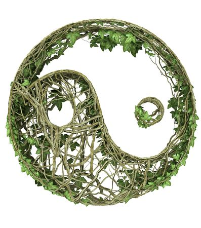 Ivy nature Yin Yang Symbol  Stock Photo