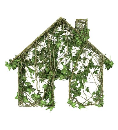 Ivy nature house icon  Stock Photo