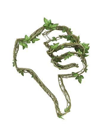 Ivy nature hand gesture  Stock Photo